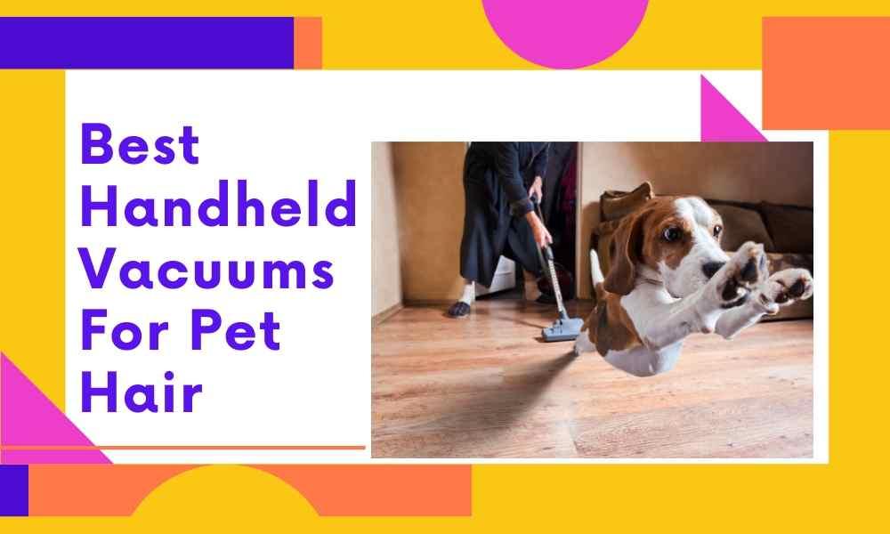 Best-Handheld-Vacuums-For-Pet-Hair.jpg